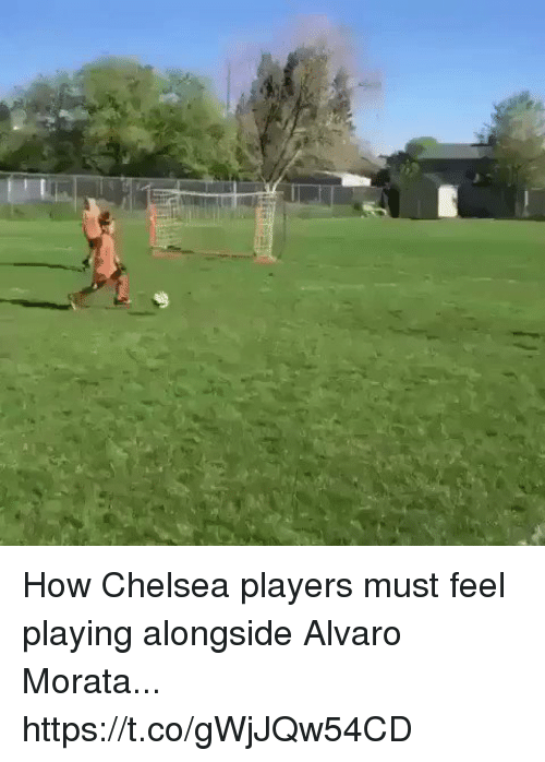 Chelsea, Memes, and 🤖: How Chelsea players must feel playing alongside Alvaro Morata...  https://t.co/gWjJQw54CD