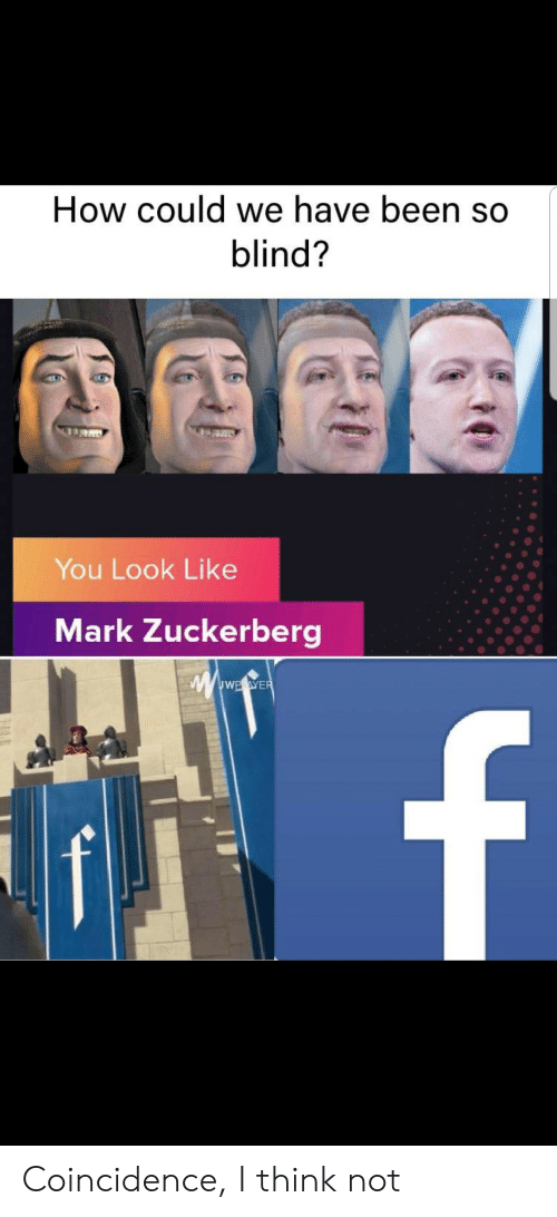 Mark Zuckerberg: How could we have been so  blind?  You Look Like  Mark Zuckerberg  wwwE.eWER  f Coincidence, I think not