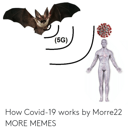 Covid-19: How Covid-19 works by Morre22 MORE MEMES