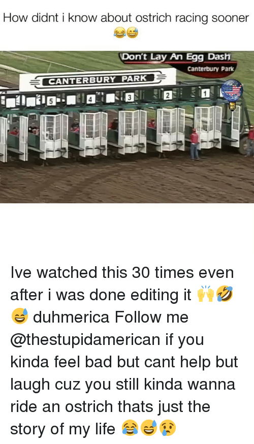 Bad, Life, and Help: How didnt i know about ostrich racing sooner  Don't Lay An Egg Dash  Canterbury Park  CANTERBURY PARK Ive watched this 30 times even after i was done editing it 🙌🤣😅 duhmerica Follow me @thestupidamerican if you kinda feel bad but cant help but laugh cuz you still kinda wanna ride an ostrich thats just the story of my life 😂😅😢