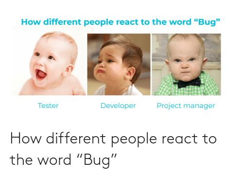"different: How different people react to the word ""Bug"""