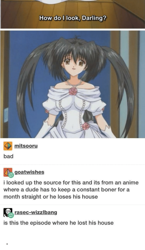 Anime, Bad, and Boner: How do I look, Darling?  mitsooru  bad  goatwishes  i looked up the source for this and its from an anime  where a dude has to keep a constant boner for a  month straight or he loses his house  rasec-wizzlbang  is this the episode where he lost his house .