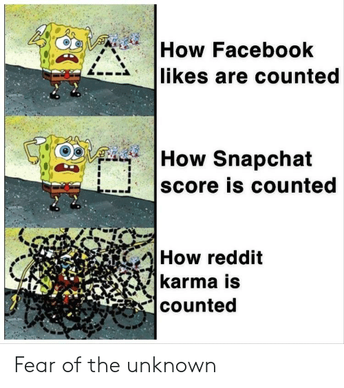 Counted: How Facebook  likes are counted  How Snapchat  score is counted  How reddit  karma is  counted Fear of the unknown