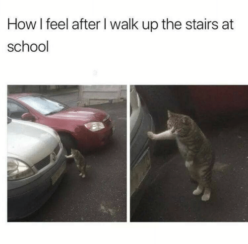 How I Feel: How I feel after I walk up the stairs at  school
