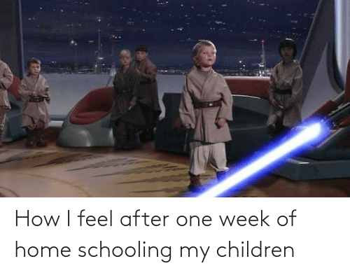 How I Feel: How I feel after one week of home schooling my children