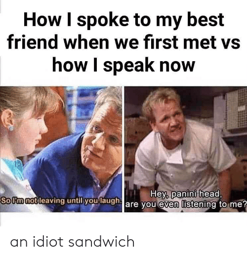 panini: How I spoke to my best  friend when we first met vs  how I speak now  SoUm not l  leaving until you laugh  Hey, panini head  are you even listening to me? an idiot sandwich
