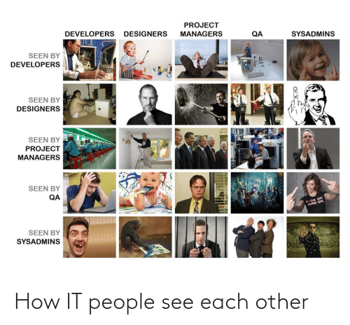 Other: How IT people see each other