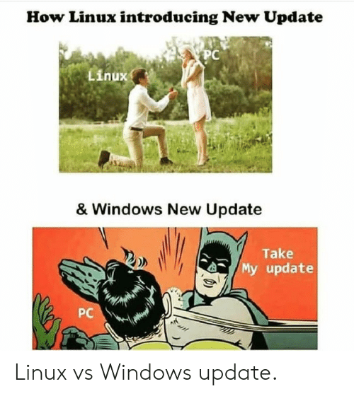 Windows, Linux, and How: How Linux introducing New Update  PC  Linux  & Windows New Update  Take  My update  PC Linux vs Windows update.