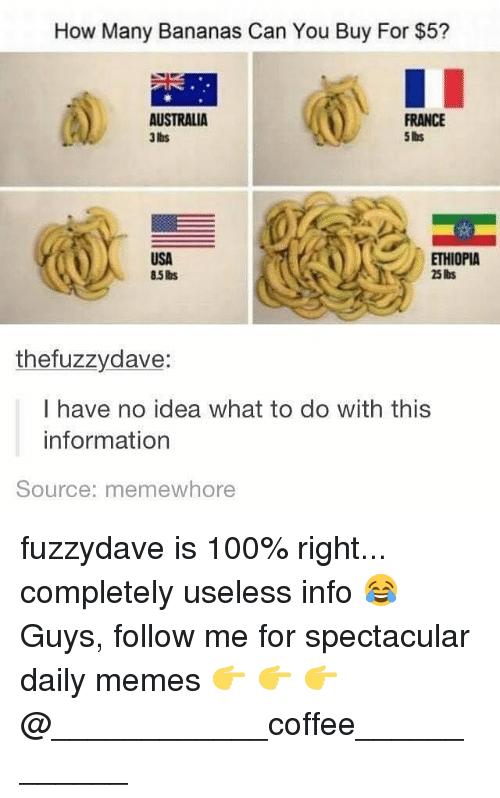 Anaconda, Memes, and Australia: How Many Bananas Can You Buy For $5?  AUSTRALIA  3 Ibs  FRANCE  5 lbs  USA  85 lbs  ETHIOPIA  25 hs  thefuzzydave:  I have no idea what to do with this  information  Source: memewhore fuzzydave is 100% right... completely useless info 😂 Guys, follow me for spectacular daily memes 👉 👉 👉 @____________coffee____________