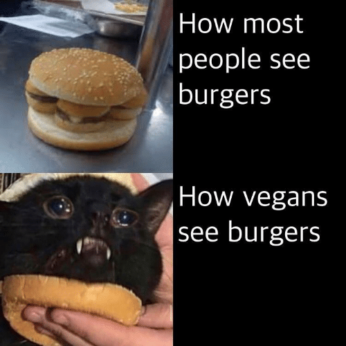 vegans: How most  people see  burgers  How vegans  see burgers