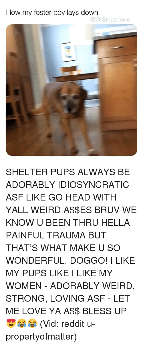 Bruv: How my foster boy lays down  @DrSmashlove SHELTER PUPS ALWAYS BE ADORABLY IDIOSYNCRATIC ASF LIKE GO HEAD WITH YALL WEIRD A$$ES BRUV WE KNOW U BEEN THRU HELLA PAINFUL TRAUMA BUT THAT'S WHAT MAKE U SO WONDERFUL, DOGGO! I LIKE MY PUPS LIKE I LIKE MY WOMEN - ADORABLY WEIRD, STRONG, LOVING ASF - LET ME LOVE YA A$$ BLESS UP 😍😂😂 (Vid: reddit u-propertyofmatter)