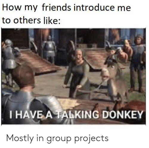 I Have A: How my friends introduce me  to others like:  I HAVE A TALKING DONKEY Mostly in group projects