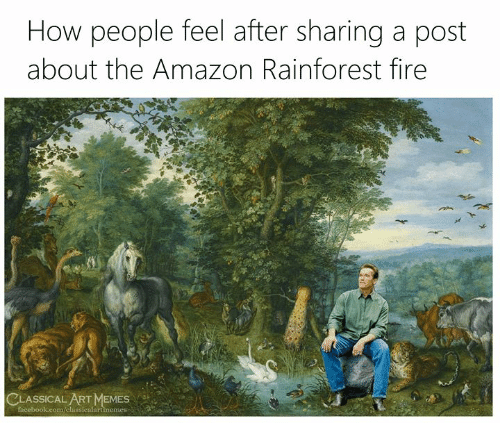 classical art memes: How people feel after sharing a post  about the Amazon Rainforest fire  CLASSICAL ART MEMES  facebook.com/classicalartimemes