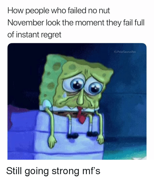 Fail, Memes, and Regret: How people who failed no nut  November look the moment they fail full  of instant regret  G:PolarSaurusRex Still going strong mf's