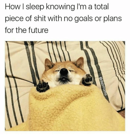 Piece Of Shits: How sleep knowing I'm a total  piece of shit with no goals or plans  for the future