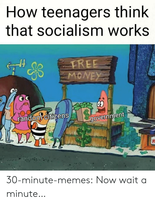 Memes, Tumblr, and Blog: How teenagers think  that socialism works  random citizens  government 30-minute-memes:  Now wait a minute…
