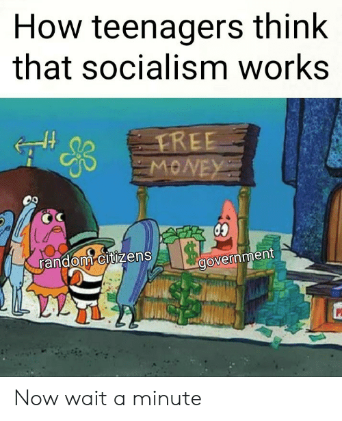 Socialism, Government, and How: How teenagers think  that socialism works  random citizens  government Now wait a minute