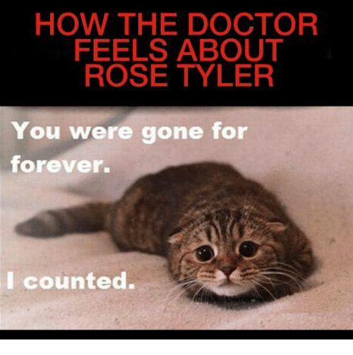 You Were Gone For Forever I Counted: HOW THE DOCTOR  FEELS ABOUT  ROSE TYLER  You were gone for  forever.  I counted.