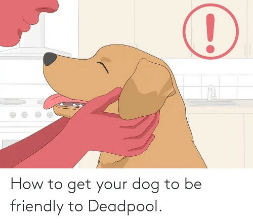 Deadpool: How to get your dog to be friendly to Deadpool.