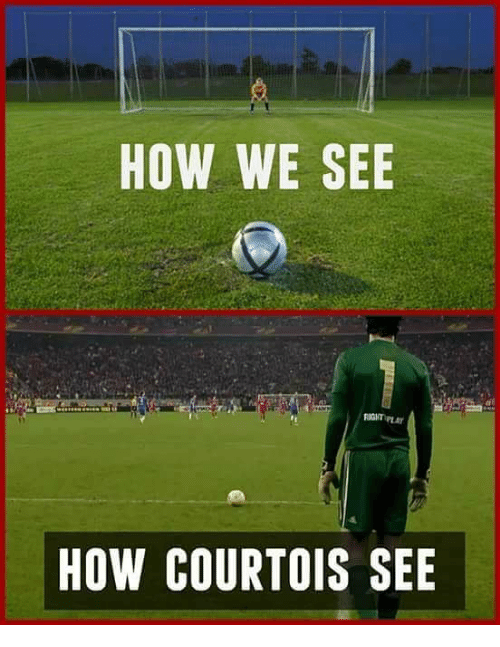 Memes, 🤖, and How: HOW WE SEE  HOW COURTOIS SEE