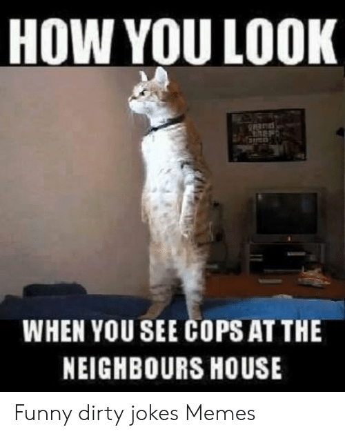 Dirty Joke Memes: HOW YOU LOOK  WHEN YOU SEE COPS AT THE  NEIGHBOURS HOUSE Funny dirty jokes Memes