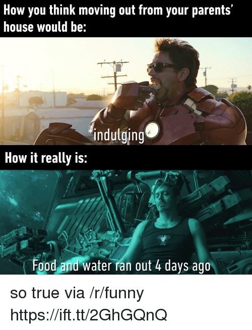 R Funny: How you think moving out from your parents'  house would be:  indulging  How it really is:  Food and water ran out 4 days ago so true via /r/funny https://ift.tt/2GhGQnQ