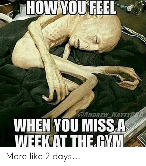 Gym, How, and You: HOW YOUFEEL  @ANDREW NATTVPRO  WHEN YOU MISSA  WEEK AT THE GYM More like 2 days...