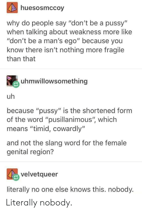 """Dont Be A Pussy: huesosmccoy  why do people say """"don't be a pussy'""""  when talking about weakness more like  """"don't be a man's ego"""" because you  know there isn't nothing more fragile  than that  uhmwillowsomething  uh  because """"pussy"""" is the shortened form  of the word """"pusillanimous"""", which  means """"timid, cowardly""""  and not the slang word for the female  genital region?  velvetqueer  literally no one else knows this. nobody. Literally nobody."""