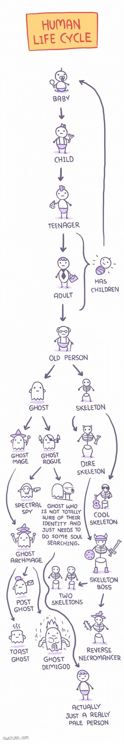 dire: HUMAN  LIFE CYCLE  BABY  CHILD  TEENAGER  HAS  CHILDRENN  ADULT  OLD PERSON  GHOST  SKELETON  GHOST GHOST  MAGE ROGUE  DIRE  SKELETON  SPECTRAL GHOST WHO  SPY IS NOT TOTALLY  SURE OF THEIR  COOL  DENTITY AND SKELETON  JUST NEEDS TO  DO SOME SOU  SEARCHING.  GHOST  ARCHMAGE  SKELETON  OSS  POST  GHOST  TWO  SKELETONS  la  539  TOAST  GHOST GHOSTNECROMANCER  REVERSE  DEMIGO  ACTUALLY  JUST A REALLY  PALE PERSON  WLTURD.com