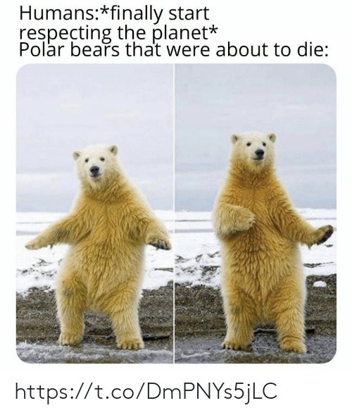 polar bears: Humans:*finally start  respecting the planet*  Polar bears that were about to die: https://t.co/DmPNYs5jLC