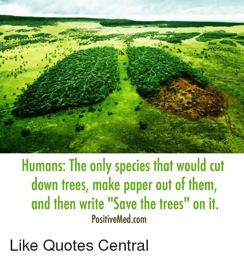 Humans The Only Species That Would Cut Down Trees Make Paper Out Of