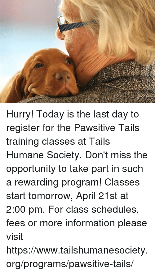 Memes, Humane Society, and Information: Hurry! Today is the last day to register for the Pawsitive Tails training classes at Tails Humane Society. Don't miss the opportunity to take part in such a rewarding program! Classes start tomorrow, April 21st at 2:00 pm. For class schedules, fees or more information please visit https://www.tailshumanesociety.org/programs/pawsitive-tails/
