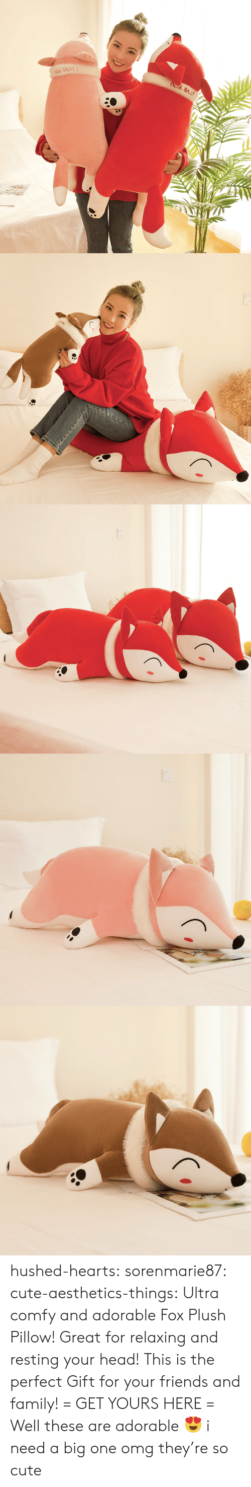 comfy: hushed-hearts:  sorenmarie87:  cute-aesthetics-things:  Ultra comfy and adorable Fox Plush Pillow! Great for relaxing and resting your head! This is the perfect Gift for your friends and family! = GET YOURS HERE =   Well these are adorable 😍  i need a big one omg they're so cute