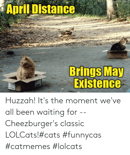 classic: Huzzah! It's the moment we've all been waiting for -- Cheezburger's classic LOLCats!#cats #funnycas #catmemes #lolcats