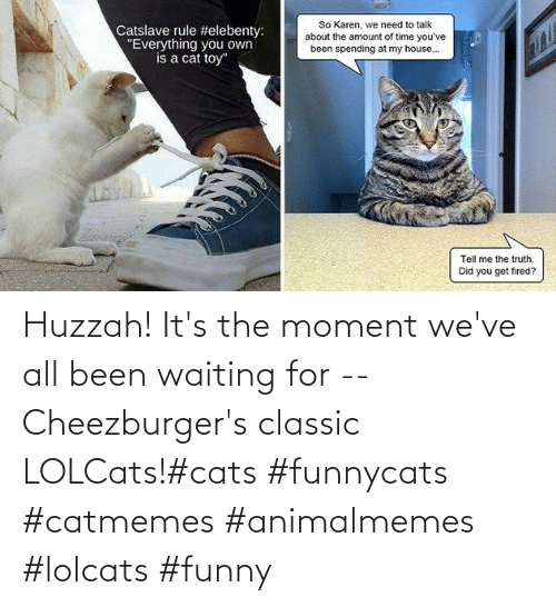 classic: Huzzah! It's the moment we've all been waiting for -- Cheezburger's classic LOLCats!#cats #funnycats #catmemes #animalmemes #lolcats #funny