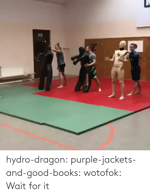 Purple: hydro-dragon: purple-jackets-and-good-books:  wotofok:  Wait for it