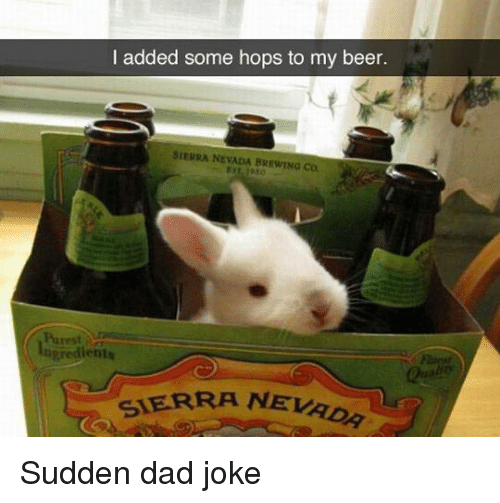 Dads Jokes: I added some hops to my beer.  SIEPRA NEVADA BREWING Co  Purest  dients  SIERRA NEVAO Sudden dad joke