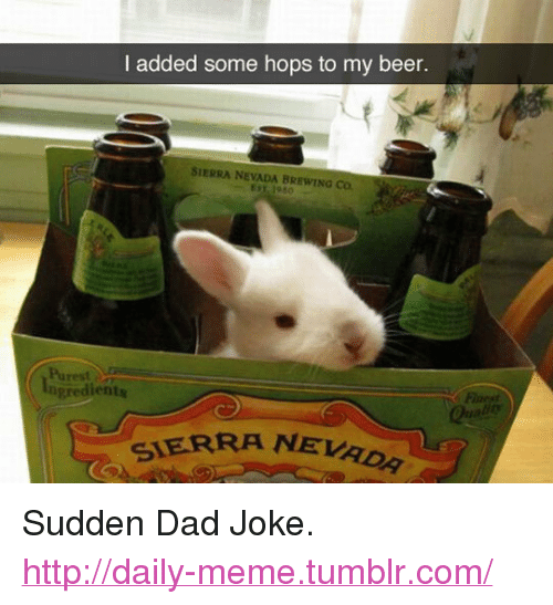 """sierra nevada: I added some hops to my beer.  SIERRA NEVADA BREWING Co.  Purest  Ingredients  SIERRA NEVA <p>Sudden Dad Joke.<br/><a href=""""http://daily-meme.tumblr.com""""><span style=""""color: #0000cd;""""><a href=""""http://daily-meme.tumblr.com/"""">http://daily-meme.tumblr.com/</a></span></a></p>"""