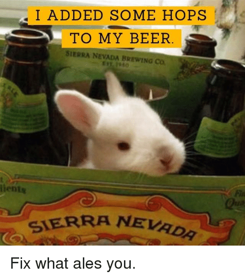 sierra nevada: I ADDED SOME HOPS  TO MY BEER  SIERRA NEVADA BREWING Co  lients  SIERRA NEvao Fix what ales you.