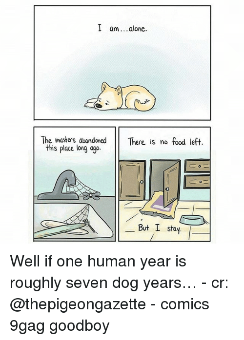 the masters: I am. .alone.  The masters, abandoned There is no food left  this place long ago  0  But I stay Well if one human year is roughly seven dog years… - cr: @thepigeongazette - comics 9gag goodboy