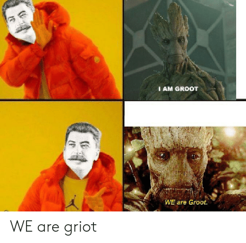 I AM GROOT WE Are Groot WE Are Griot | Dank Meme on esmemes com