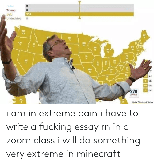 extreme: i am in extreme pain i have to write a fucking essay rn in a zoom class i will do something very extreme in minecraft