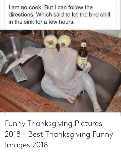 Chill, Funny, and Thanksgiving: I am no cook. But I can follow the  directions. Which said to let the bird chill  in the sink for a few hours. Funny Thanksgiving Pictures 2018 - Best Thanksgiving Funny Images 2018