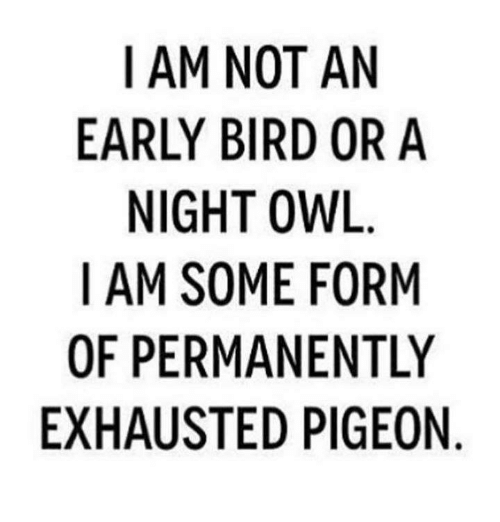 mpa: I AM NOT AN  EARLY BIRD OR A  NIGHT OWL  I AM SOME FORM  OF PERMANENTLY  EXHAUSTED PIGEON  YN  NIO  NR  RIE  A0  ON IG  FEP  TD  OROEN  N BI TMA  OMT  MYGS  RS  EU  IR NI M  MPA  -A  AFH  10X