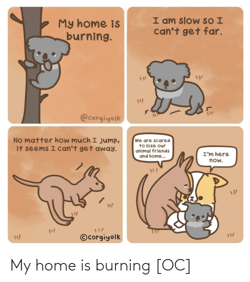 burning: I am slow SO I  can't get far.  My home is  burning.  @corgiyolk  No matter how much I jump,  it seems I can't get away.  We are scared  to lose our  animal friends  and home..  I'm here  now.  ©corgiyolk My home is burning [OC]