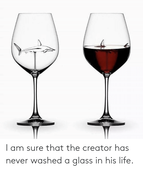 creator: I am sure that the creator has never washed a glass in his life.
