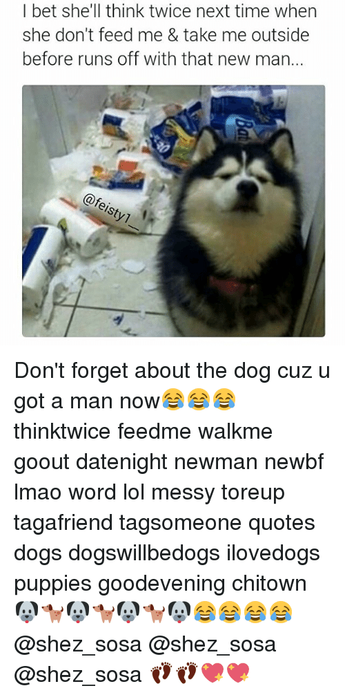 Newman: I bet she'll think twice next time when  she don't feed me & take me outside  before runs off with that new man.  eisty1 1 Don't forget about the dog cuz u got a man now😂😂😂 thinktwice feedme walkme goout datenight newman newbf lmao word lol messy toreup tagafriend tagsomeone quotes dogs dogswillbedogs ilovedogs puppies goodevening chitown 🐶🐕🐶🐕🐶🐕🐶😂😂😂😂 @shez_sosa @shez_sosa @shez_sosa 👣👣💖💖