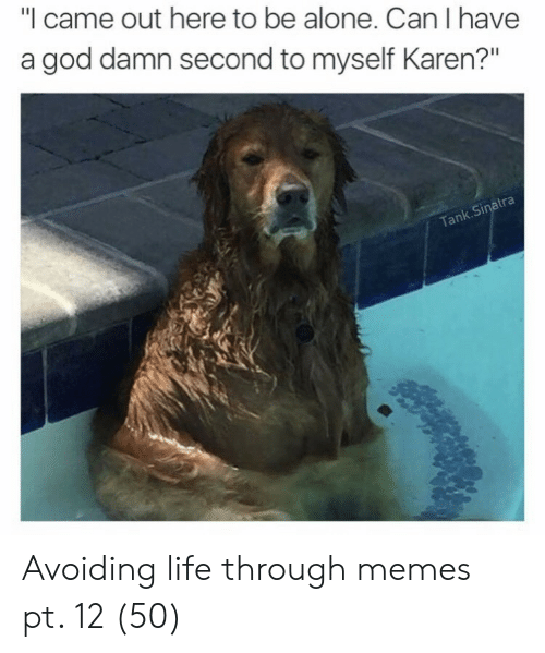 """Being Alone, God, and Life: """"I came out here to be alone. Can I have  a god damn second to myself Karen?""""  atra  k.Si  Tan Avoiding life through memes pt. 12 (50)"""