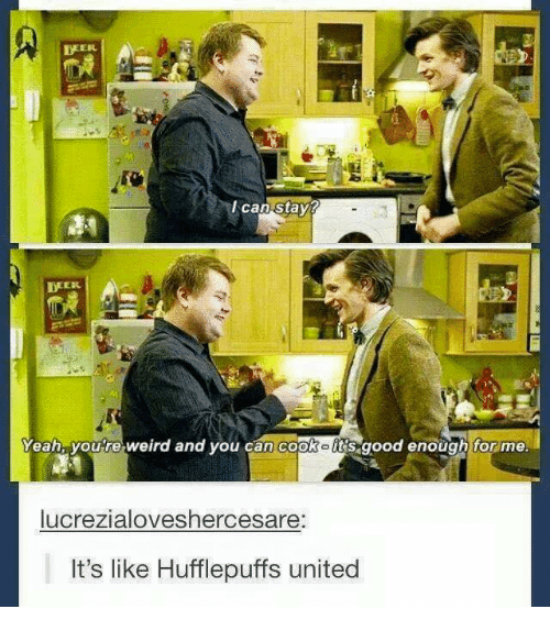 Memes, Weird, and Yeah: I can stay?  TWEEK  Yeah, youre weird and you can cookolrs good enough for me.  lucrezialoveshercesare:  It's like Hufflepuffs united