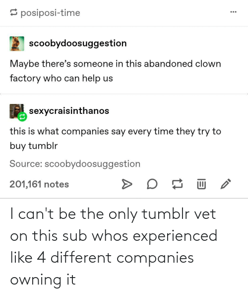 companies: I can't be the only tumblr vet on this sub whos experienced like 4 different companies owning it